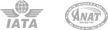 Certificari IATA